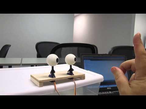 Max's Animatronic Robot Eyes Part 1