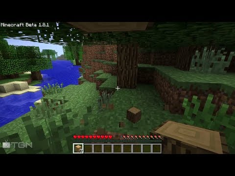 ★ Minecraft 1.8 - Day 1 Survival Guide, ft. MFPallytime! - WAY ➚