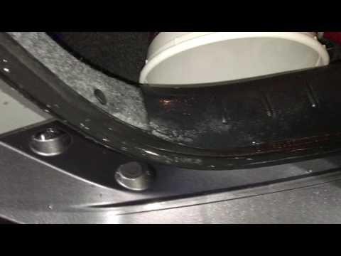 Crazy Ants invade car