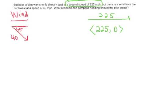 vector examples ws2 #3