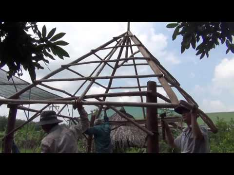 Making a log hut with bamboo and leaf roofing