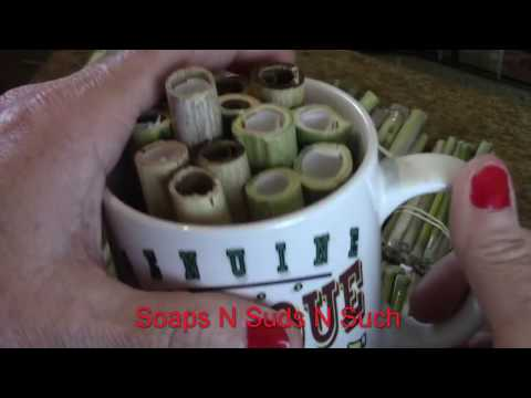 Mason Bee, Solitary Bees, Leaf Cutter, Pollinator Tube Homes Follow Up