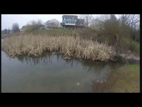Winter Pond Fishing for bluegill
