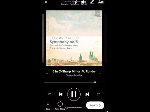 How to put music from Spotify to your Instagram story?