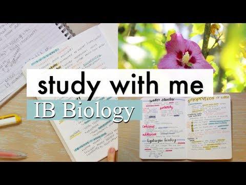 Study With Me | IB HL Biology (Molecular Biology 2.2)