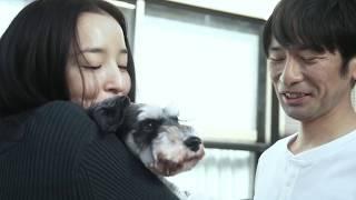 人間の欲望、嫉妬の渦・エロティックサスペンス/映画『クロス』予告編