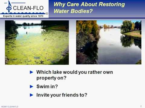 Naturally Reduce Algae and Weeds with Lake or Pond Aeration- Clean-Flo