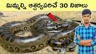30 Interesting Facts Telugu | Unknown Facts | Bmc Facts | Telugu