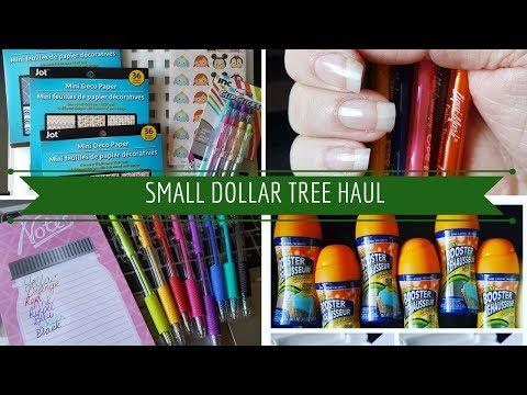 Small Dollar Tree Haul