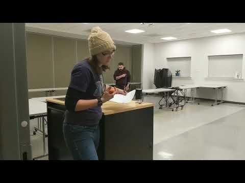 2018.01.13 - UKC Nosework - Elite Interior - Trial 1 - Harley Quinn
