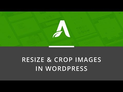 Quick Tutorial: How to Crop & Resize an Image in WordPress