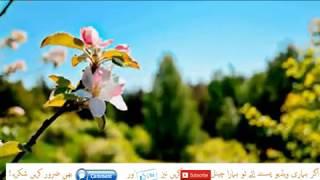 Jannat aur dozakh ka bayan by Molana Tariq Jameel