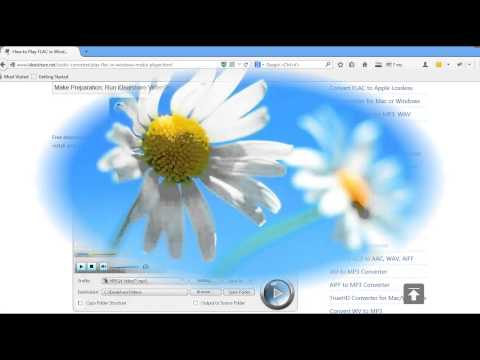 Easy Way to Play FLAC in WMP - Convert FLAC to Windows Media Player