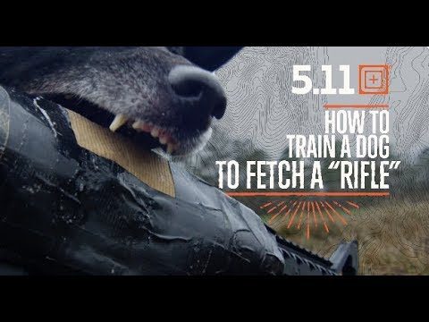 How To Train A Dog To Fetch - Dog Training for Far Cry 5 | 5.11 Tactical
