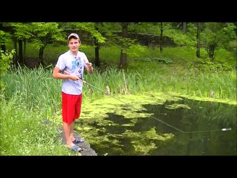 Topwater Frog Fishing For Bass