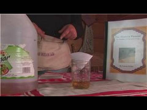 Housekeeping: Natural Insect Repellent : How to Get Rid of Fruit Flies (Easy, Cheap, Safe & Clean)