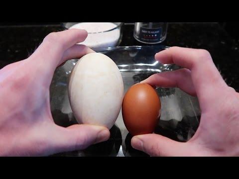 Big Fat Goose Eggs