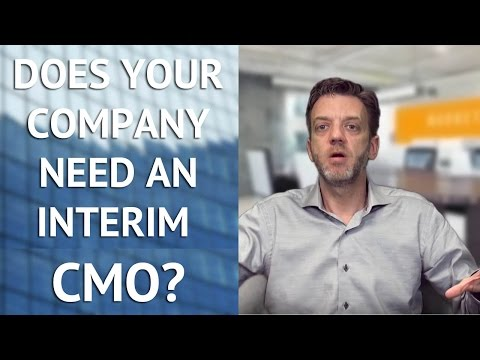 Does Your Organization Need an Interim CMO?