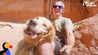 Download Adventure Puppy Helps Rescuer Heal After Losing His Best Friend | The Dodo Video