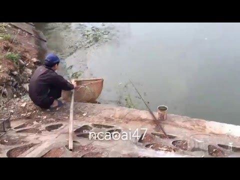 DIY - Fishing Tips -  Bamboo Fishing Racket - Hiếm thấy ai dùng cái này làm vợt cá .