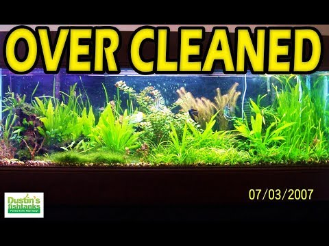 TOP 5: Trying Too Hard and FAILING Moments with Your Aquarium