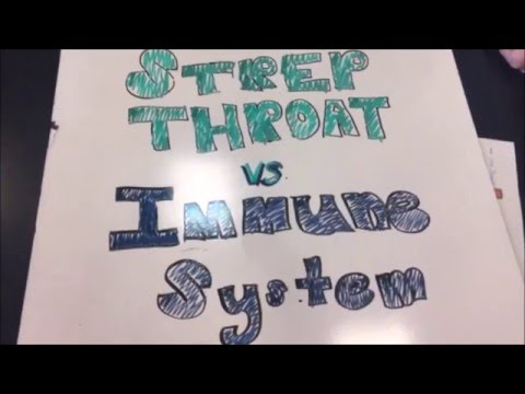AP BIO: The Immune System v. Strep Throat