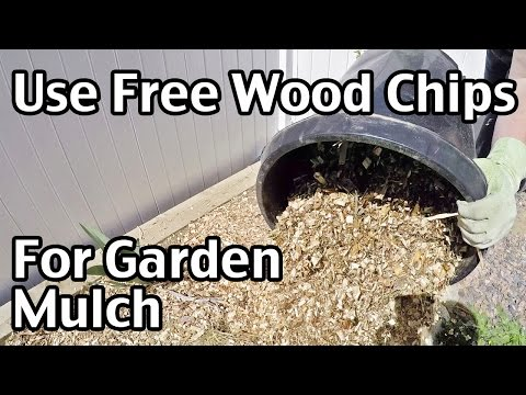 How To Use Free Wood Chips For Garden Mulch
