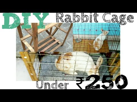 DIY RABBIT CAGE UNDER ₹ 250 || HOW TO MAKE HOMEMADE BUDGET FRIENDLY RABBIT CAGE? | (Hindi/ Urdu)