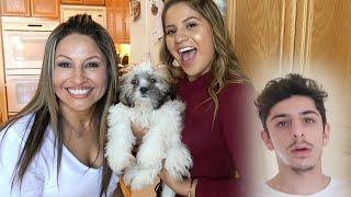 WE PRANKED RUG & BRAWADIS!! *Lost Dog Prank*