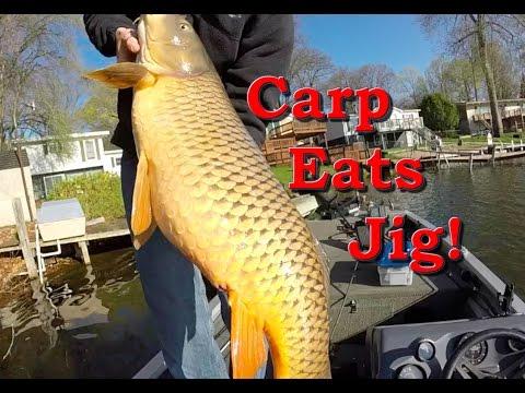 Massive Carp Caught Bass Fishing