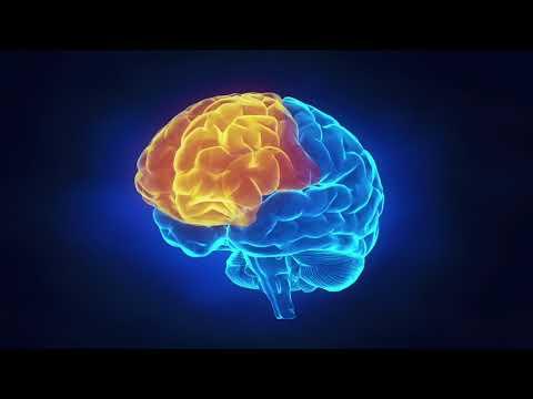 Broken Brain Trailer