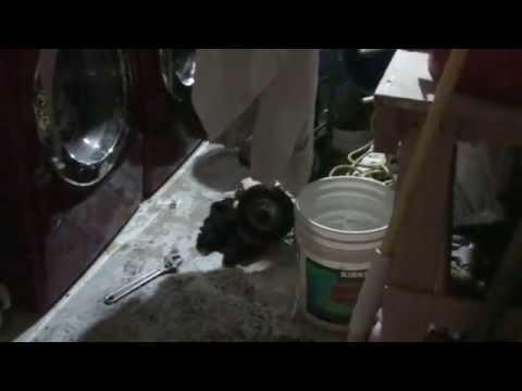 Sewer Backup - Disaster!