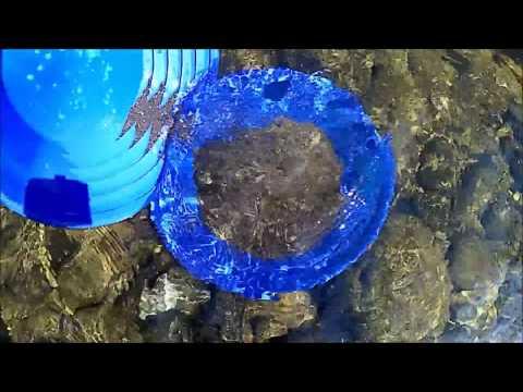 Devon Gold Prospecting April 2017 - part 2