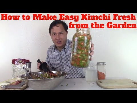 How to Make Easy Kimchi Fresh from the Garden Recipe