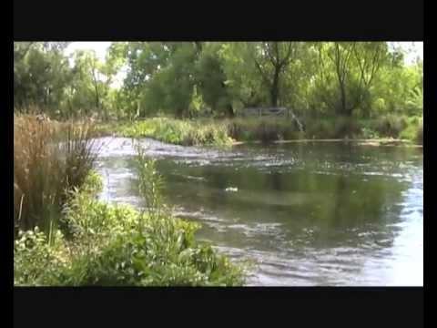 Spring Creek fly fishing