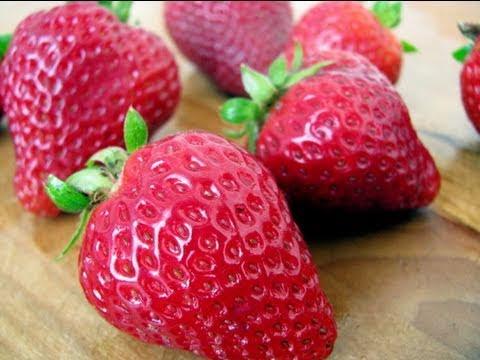 Strawberry 101