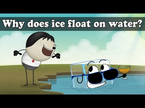 Why does ice float? | It's AumSum Time