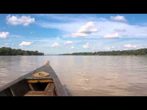 Exploring the Amazon river