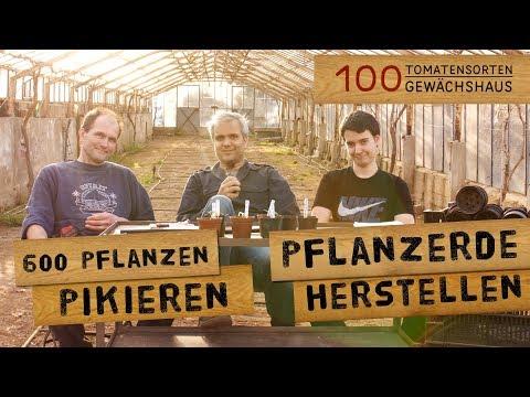 Tomaten pikieren und Pflanzerde in Gärtnereiqualität herstellen - 100TSGW