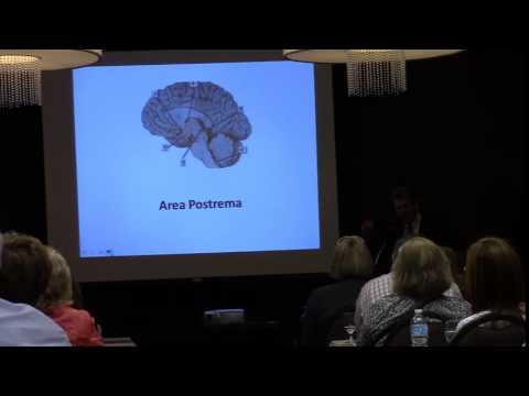 Medicinal Marijuana Lecture By Bruce M. Kleinberg M.D. of Ortiz Kleinberg