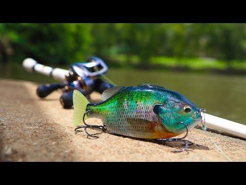Pond Fishing With BIG Bluegill SwimBait!!