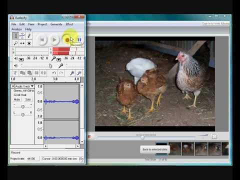 Make a movie slideshow in Picasa3