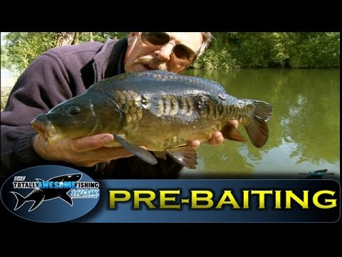 How to Pre-bait a swim - TAFishing