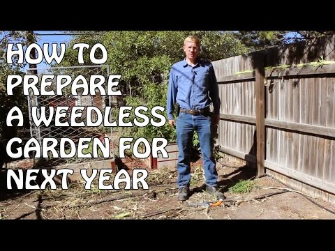 How To Prepare A Weedless Garden For Next Year