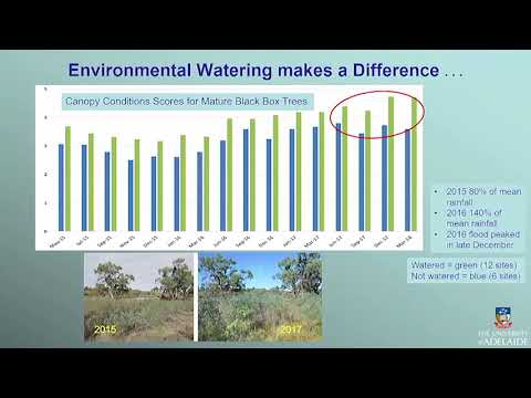 Day 1 - Environmental Outcomes in the Murray Darling Basin - Anne Jensen