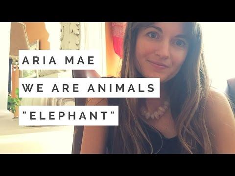 Elephant Totem - Spirit Animal Guided Meditation #1
