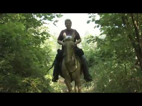Dos & Don'ts of Trail Riding