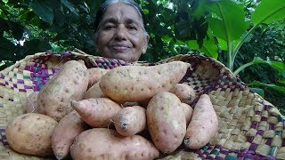 Village Foods ❤ Cooking Yellow Sweet Potato Tempered Curry in my Village by my Mom