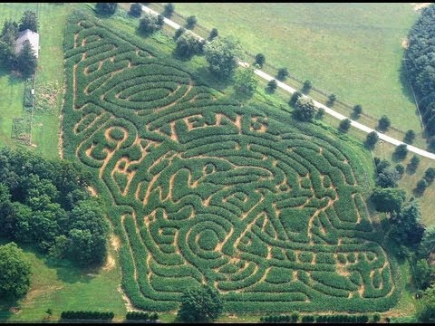How to get out of a Rodgers' Farm corn maze