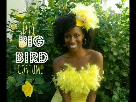 DIY  Easy Big Bird Costume